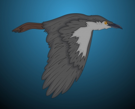 Classic Crow Vector Illustration Vector