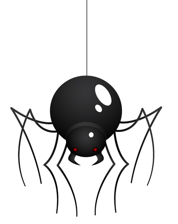 spider web: Cartoon Spider