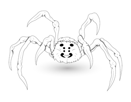 White Spider Illustration Vector