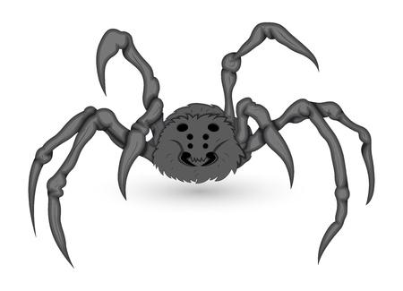 poisonous: Poisonous Vector Spider