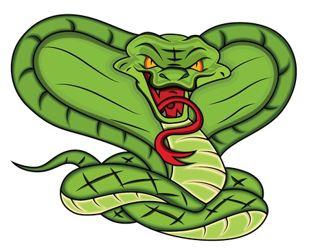 snake skin: Mascot of Angry Snake Vector Illustration
