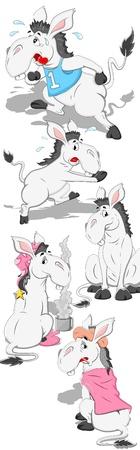 Donkey Vectors Vector