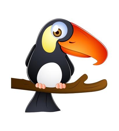 amerika papağanı: Toucan Vektör
