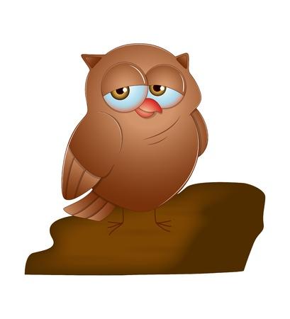 Owl Vector Vector