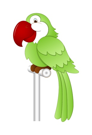 Cartoon Parrot Vector Illustration Vector