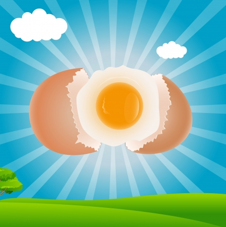 radial cracks: Egg Yolk Vector - Breakfast Concept Illustration