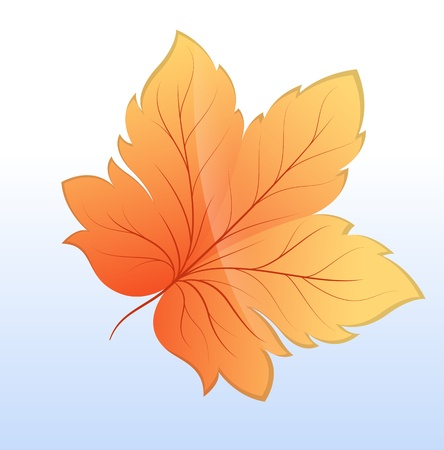 Automn Leaf Vector Icon Illustration Stock Vector - 16104724