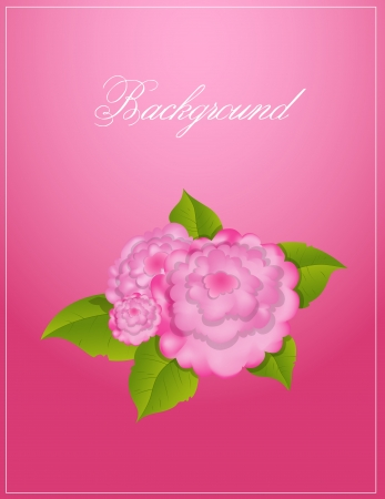 Vector Flower Background Vector