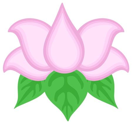 Lotus Flower Vector Vector