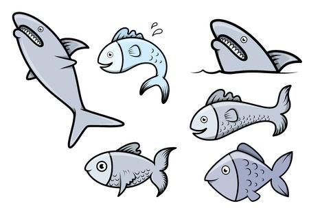 fish head: Fish Set - Vector Cartoon Illustration