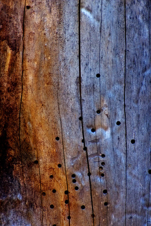 to woo: aqged wooden Stock Photo