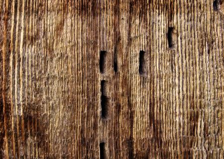 barnwood: grunge wood