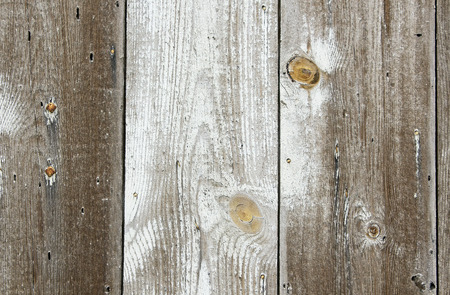 Wooden plank Texture with knots pattern photo