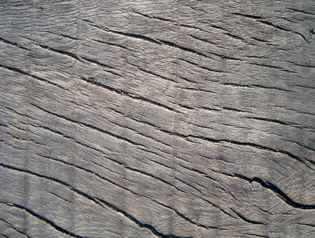 rough old wood photo