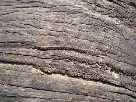 barnwood: weathered wooden
