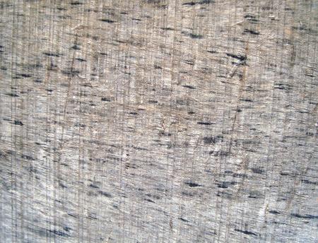 barnwood: old wood surface background