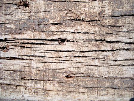 vintage wood photo