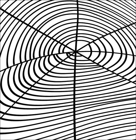 spider web: Retro Spider Web Design
