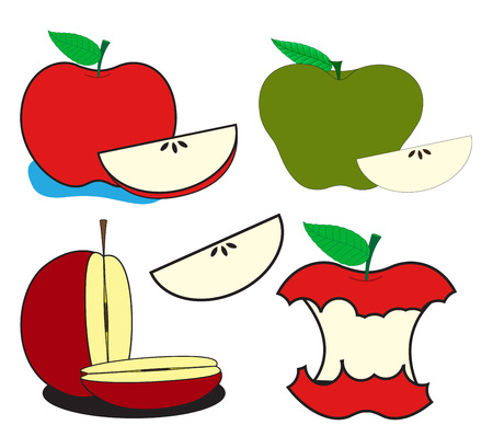 Apples and Slices Vector Vector