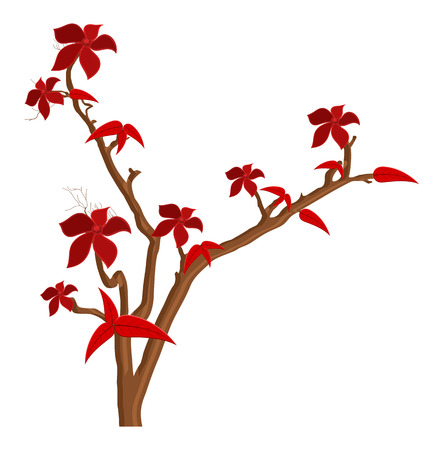autumn flowers: Red Autumn Flowers Branches Illustration
