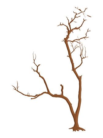 tree dead: Estratto Dead Tree Vettoriali