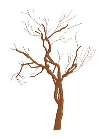 tree dead: Forma astratta Dead Tree