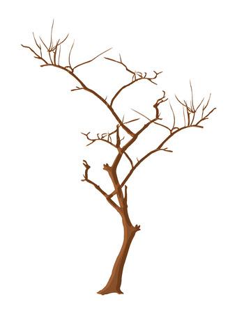 tree dead: Estratto Dead Tree Stem