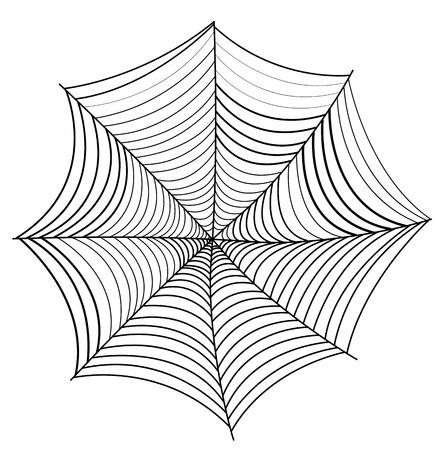 spider web: Scary Spider Web Illustration