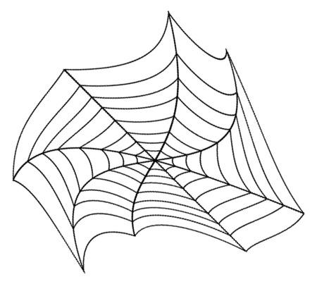 spider web: Spider Web Design