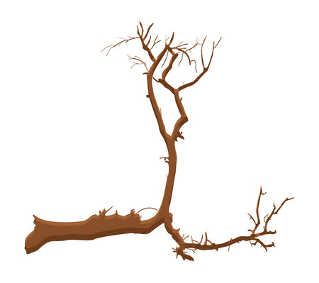 arbre mort: Dead Tree Shape Design