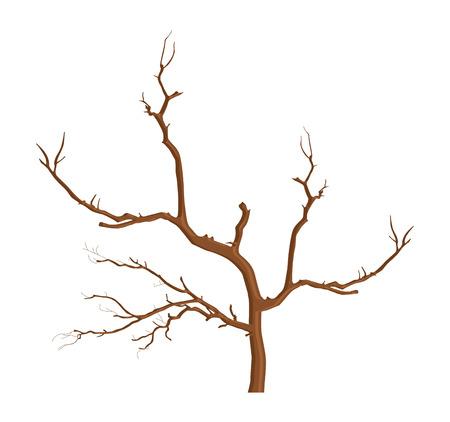 arbre mort: Dead Tree Illustration