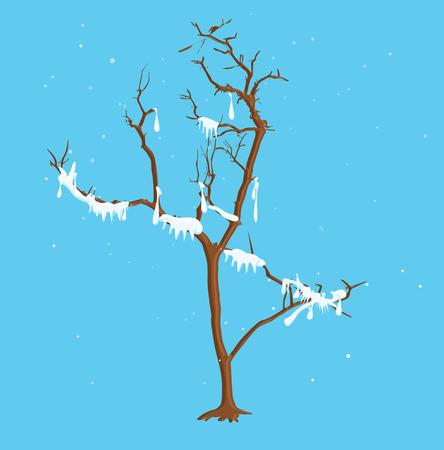 winter tree: Winter Snow Tree