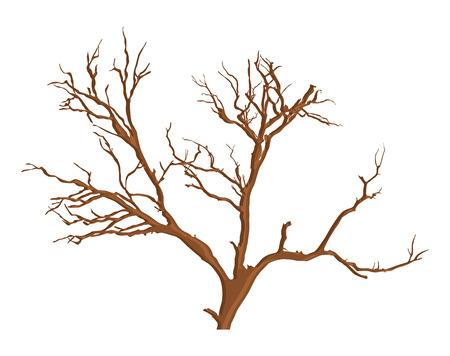 arbre mort: Spooky Dead Tree Vector