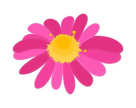 Pink Flower Vector Shape Illustration