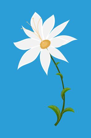 dessin fleur: Fleur blanche Dessin Art