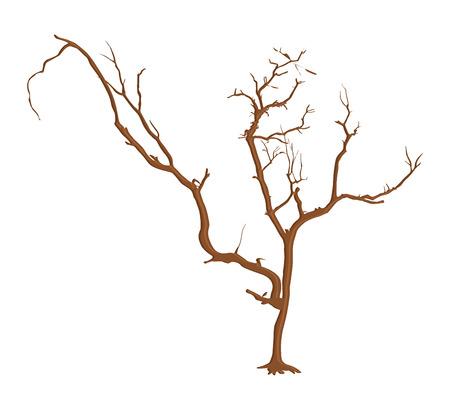 tree dead: Spooky Halloween Dead Tree Vettoriali