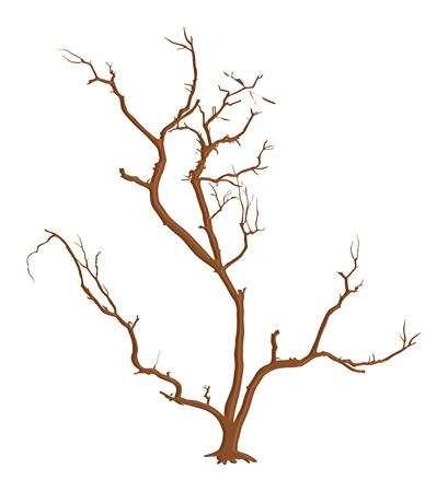 tree dead: Spooky Morto Rami di albero vettore Vettoriali