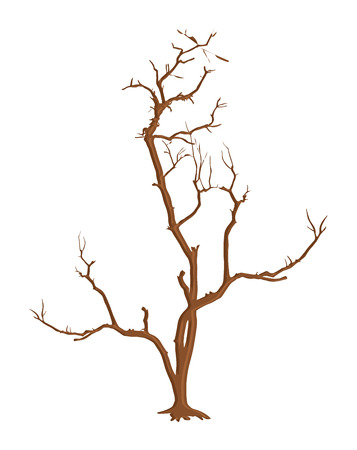 tree dead: Spaventoso Filiali Dead Tree