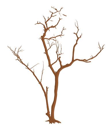 tree dead: Filiali Haunted Dead Tree