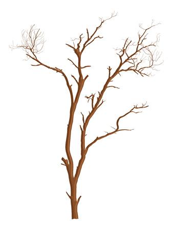 arbre mort: Dead Tree Vector Shape Design Illustration