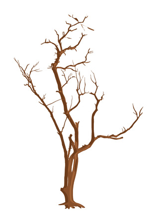 tree dead: Rifiuti Dead Tree Vettoriali