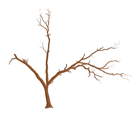 tree dead: Morto figura dell'albero Vettoriali