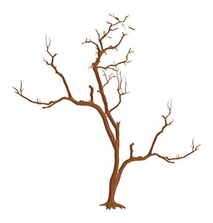 arbre mort: Dead Tree sec Forme Vector