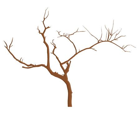 tree dead: Vintage Dead Tree Branches
