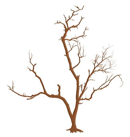 arbre mort: Creative branches d'arbres morts Illustration