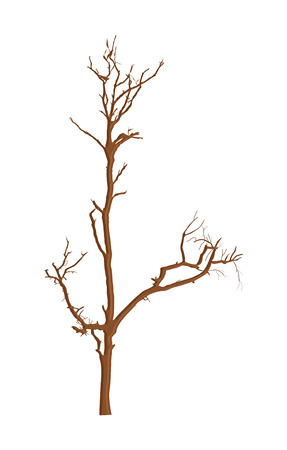 toter baum: Dead Tree Vector