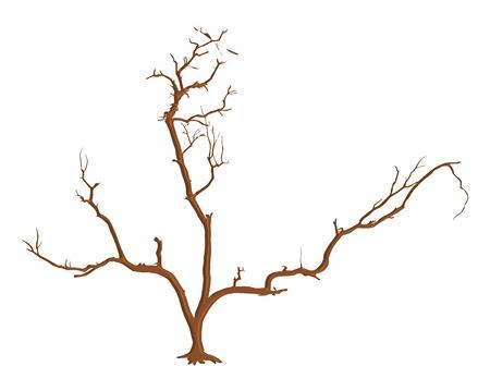arbre mort: Dead Tree souches Illustration