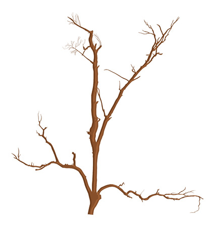 toter baum: Abstrakt Dry Dead Tree Branches Designs