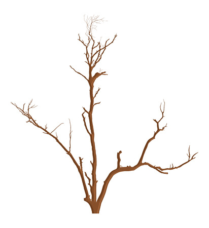 toter baum: Natur Garten Dead Tree Vector Illustration