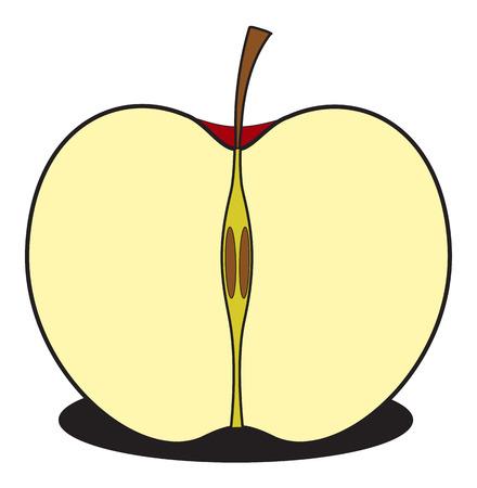 sliced tree: Half Apple